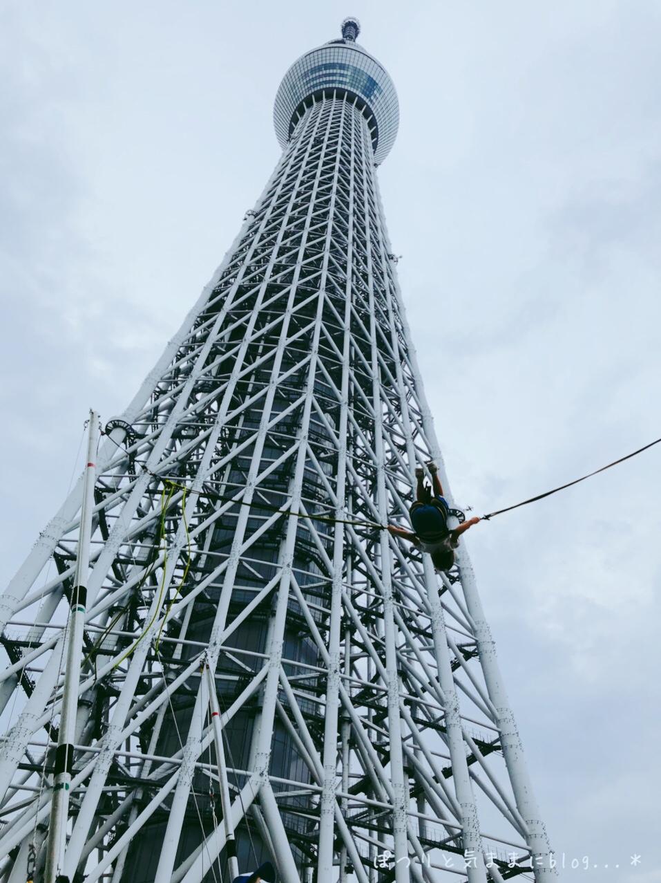 東京スカイツリーで、東京都民の夏割キャンペーンですって!